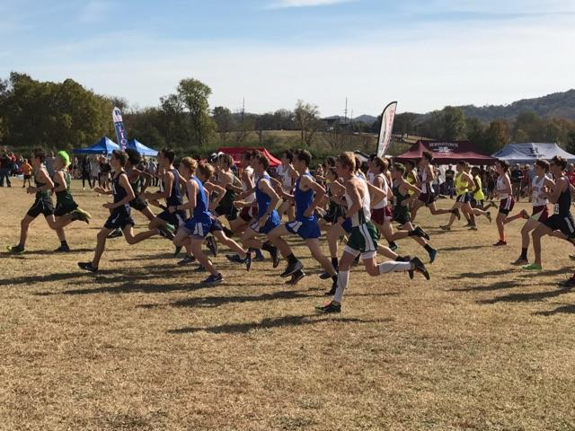 The boys begin their race. Sophomore Thomas Mann placed seventh in the boys division behind sophomore Zach Williams, who placed sixth.