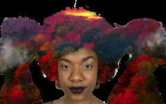 The politics of Black identity