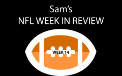 Sam's NFL Week In Review: Week 14