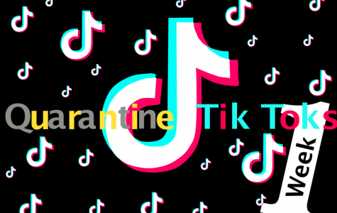 A recreation of the Tik Tok logo in reference to Keiara's series.