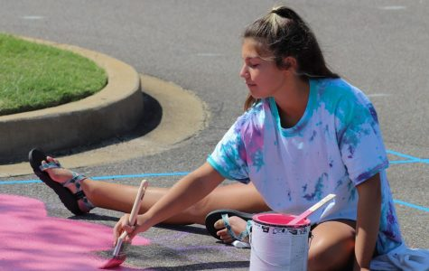 Sophia Manshack peacefully paints the background of her senior parking spot. She started out with a pink canvas before she added more details.